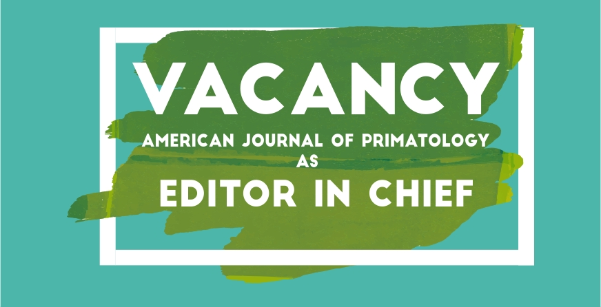 Vacancy Editor AJP