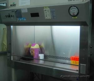 Laboratorium Bioteknologi 1