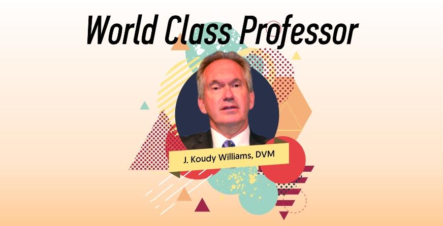 Agenda World Class Professor bersama J Koudy Williams