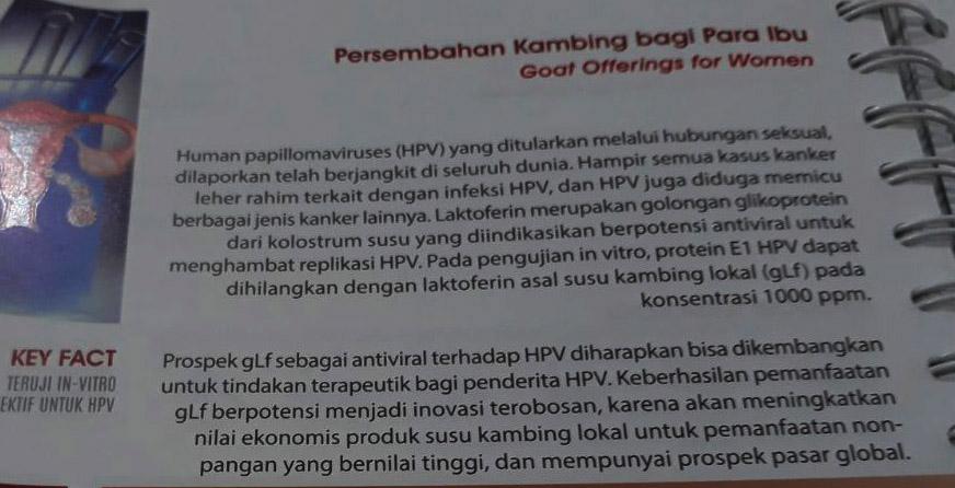 Indonesia 109 Innovations