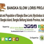 Bangka Slow Loris Project