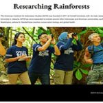 Researching Rainforests