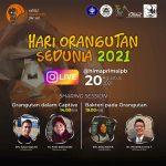 Orangutan Day 2021: IG Live Sharing Session @himaprimaipb