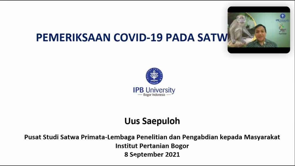 Vet Capacity Building: Pemeriksaan Covid-19 di Satwa Liar